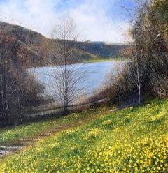 Doras Field Ulswater original landscape painting