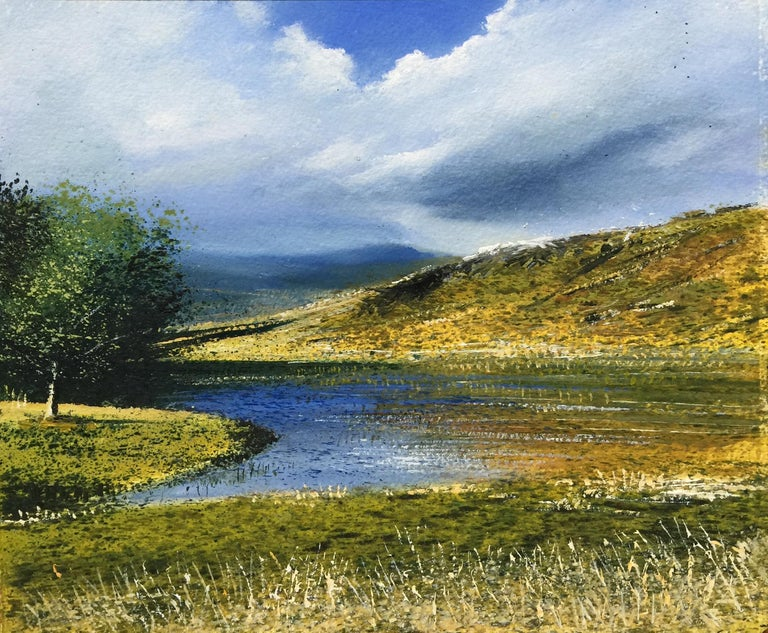 Rory J. Browne Landscape Painting - Kelly Hall Tarn - original landscape painting contemporary modern art