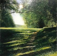 Light and Shadows - original landscape painting Contemporary Art- 21st Century