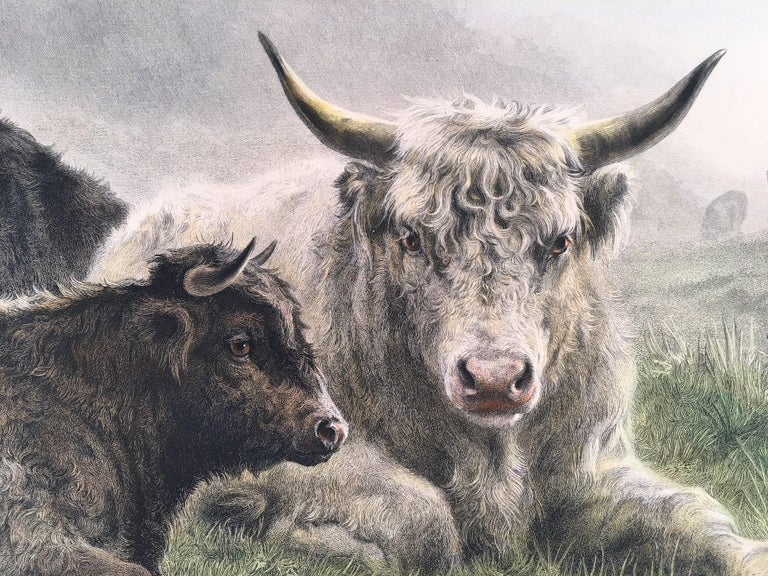 Cattle Resting on a Hillside in the Alps - Gray Landscape Print by Rosa Bonheur