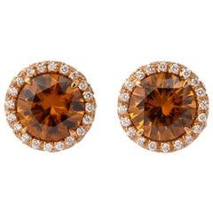 Rose Gold Brown Zircon Diamond Stud Earrings