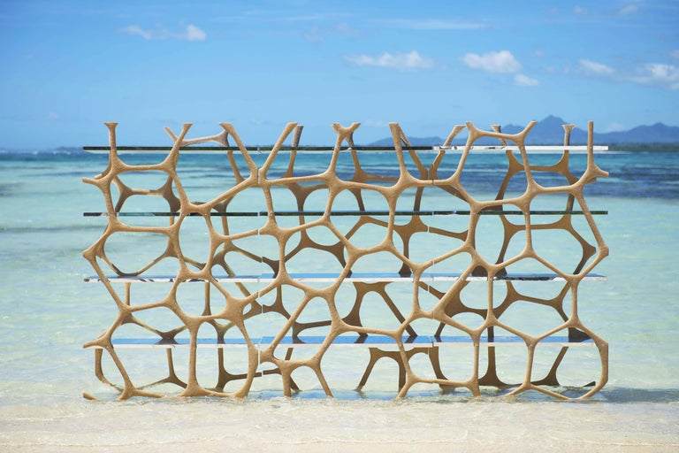 Rossana Orlandi Aqua Shelf A in Mirrored Silver by Francesco Messina for Cypraea For Sale 6
