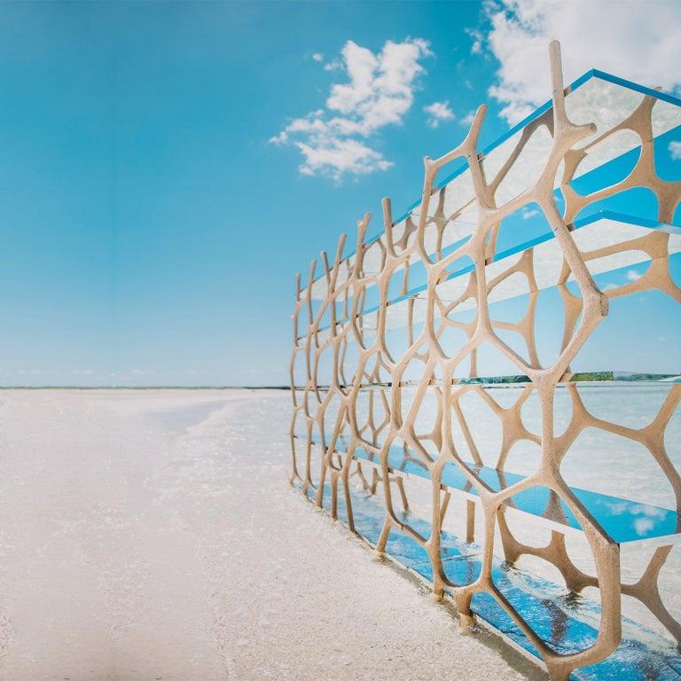 Rossana Orlandi Aqua Shelf A in Mirrored Silver by Francesco Messina for Cypraea For Sale 8