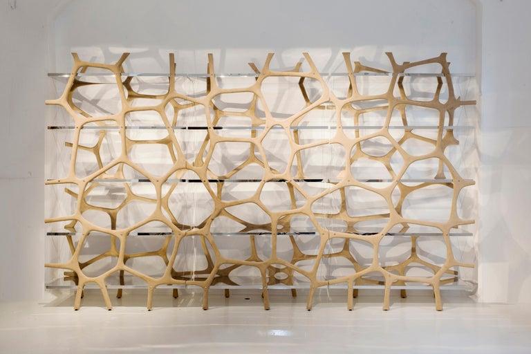 Modern Rossana Orlandi Aqua Shelf A in Mirrored Silver by Francesco Messina for Cypraea For Sale
