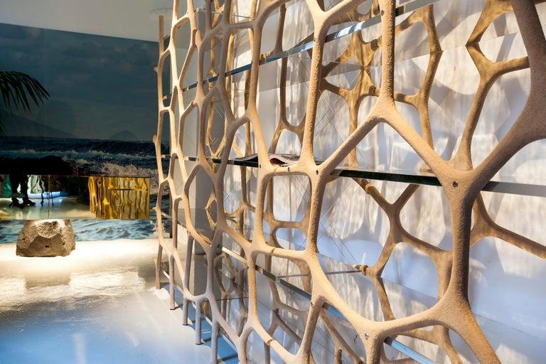Contemporary Rossana Orlandi Aqua Shelf A in Mirrored Silver by Francesco Messina for Cypraea For Sale