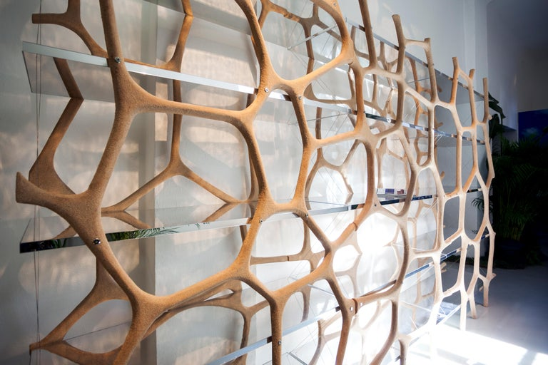 Rossana Orlandi Aqua Shelf A in Mirrored Silver by Francesco Messina for Cypraea For Sale 1