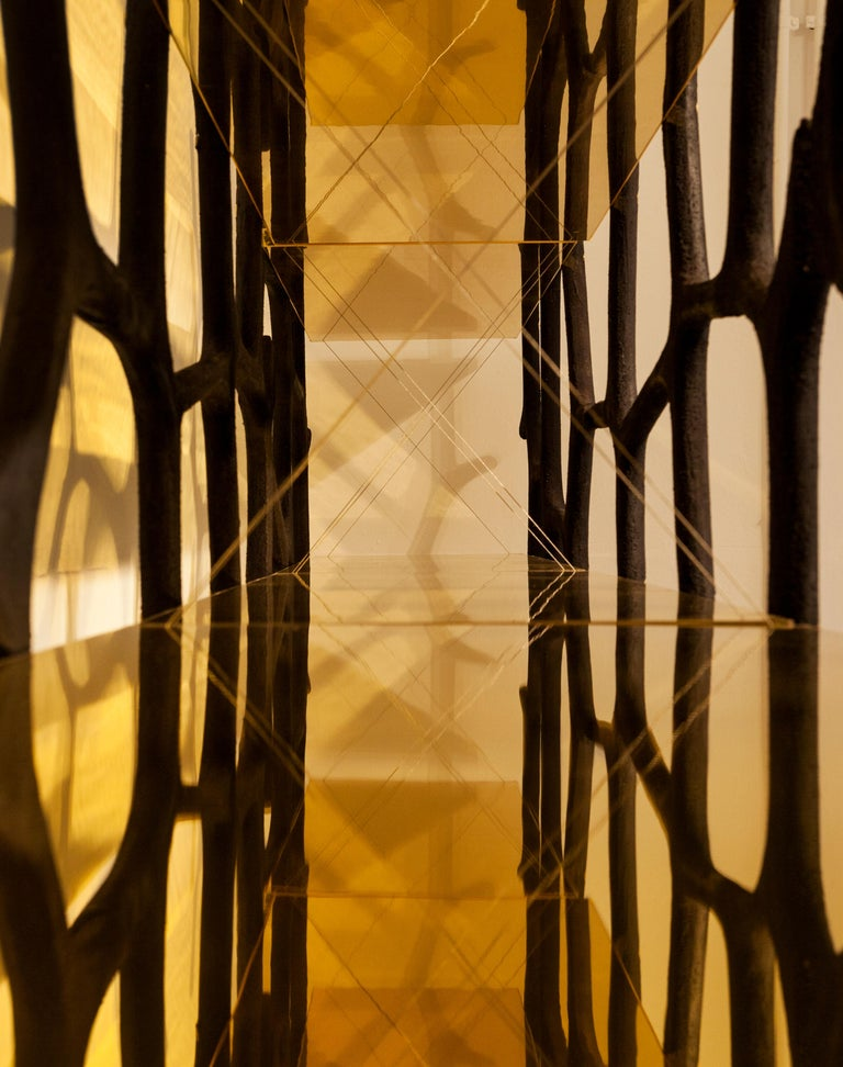 Rossana Orlandi Aqua Shelf C in Mirrored Gold by Francesco Messina for Cypraea For Sale 6