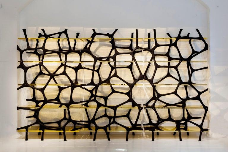 Rossana Orlandi Aqua Shelf C in Mirrored Gold by Francesco Messina for Cypraea For Sale 2
