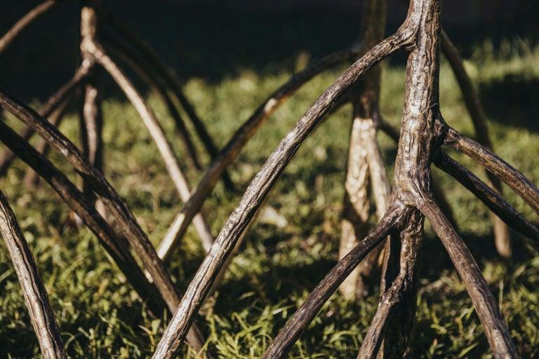 Mauritian Rossana Orlandi Mangrovia Low Table Set Bronze by Francesco Messina for Cypraea For Sale