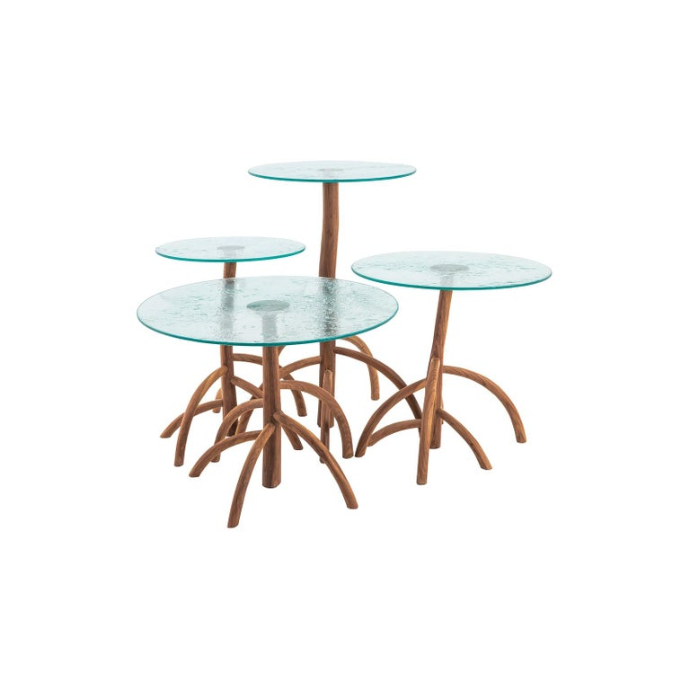 Rossana Orlandi Mangrovia Low Table Set Walnut by Francesco Messina for Cypraea For Sale