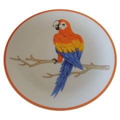 Round Orange and Blue Macaw Parrot Decorative Plate