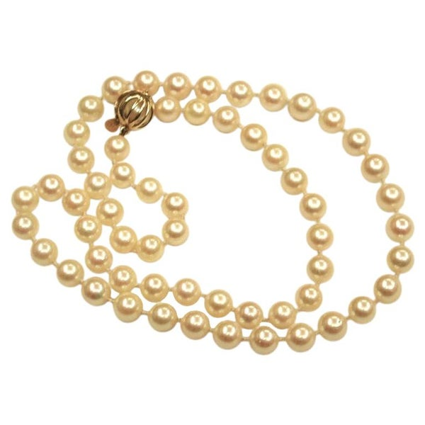 Row of Akoya Cultered Pearls Made by Mikimoto with 18 Carat Gold Snap circa 1980