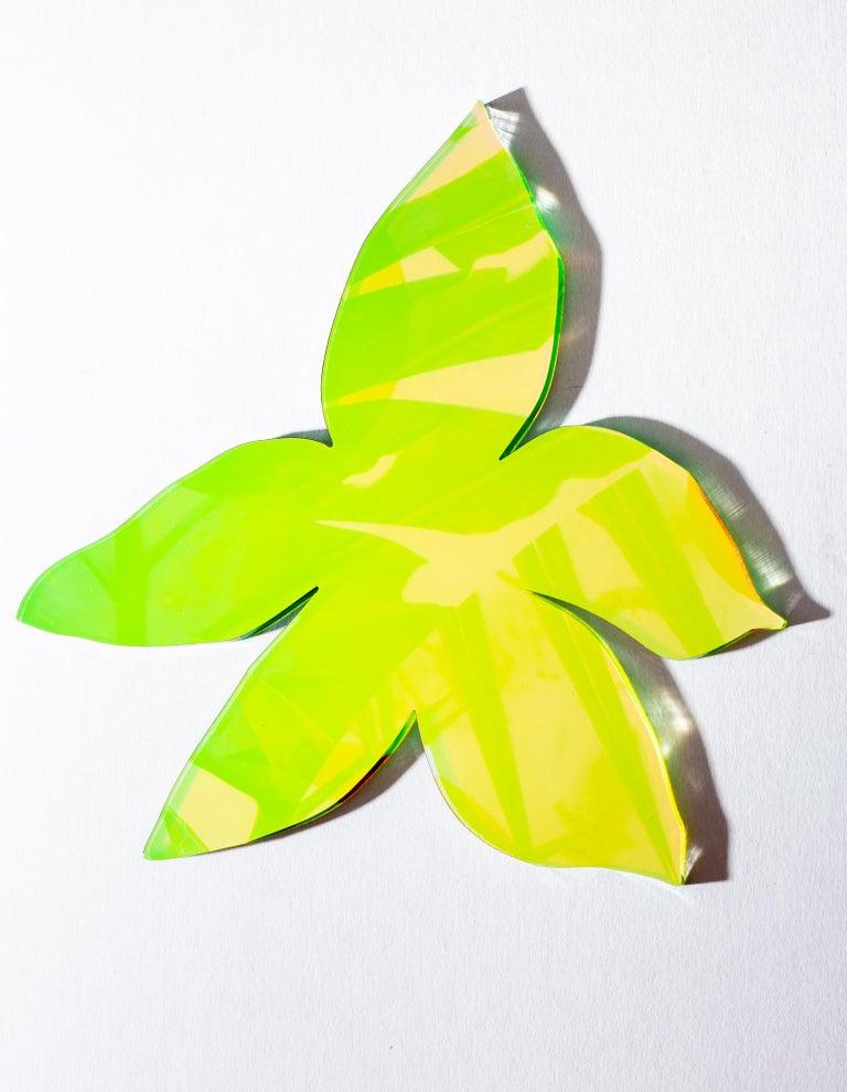 Orchid Star - Sculpture by Roxana Azar