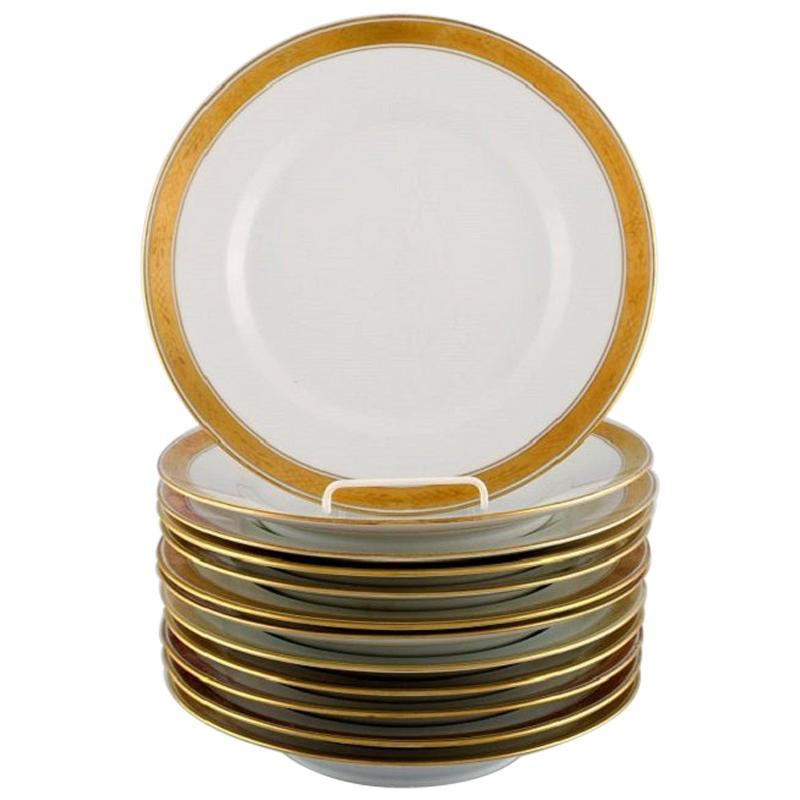 Royal Copenhagen Dagmar, White, 12 Porcelain Dinner Plates with Gold Edge