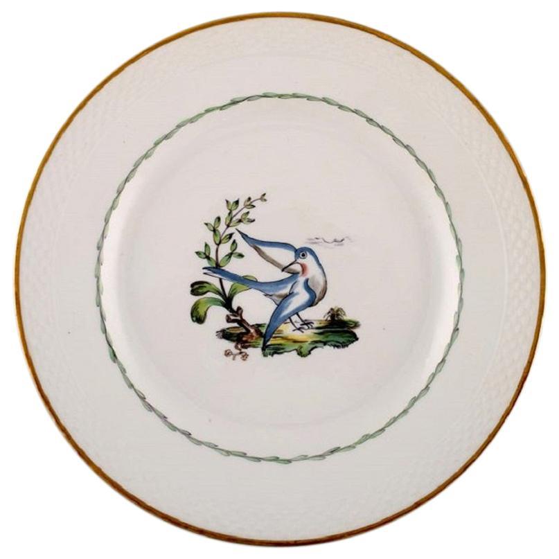 Royal Copenhagen Dinner Plate in Hand Painted Porcelain, 31 Pcs in Stock
