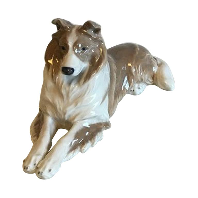 Royal Copenhagen Figurine of Collie No 1701 For Sale