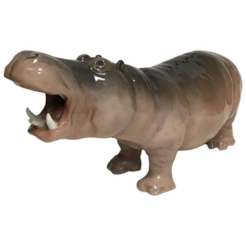 Royal Copenhagen Figurine of Hippopotamus