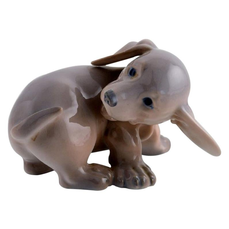 Royal Copenhagen Porcelain Figurine, Dachshund Puppy, 1920s