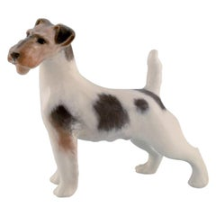 Royal Copenhagen Porcelain Figurine, Wire Hair Fox Terrier, 1920s