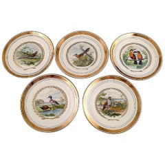 Royal Copenhagen, Set of Five Large Dinner / Decoration Plates with Bird Motifs