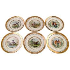 Royal Copenhagen, Set of Six Large Dinner / Decoration Plates with Bird Motifs