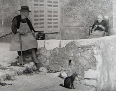 Cat on a Side Street European Scene 1960s Black and White Photograph