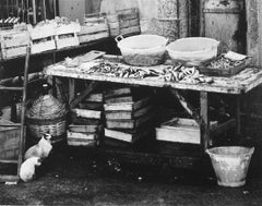 Market Table in Portugal with Two Siamese Cats 1960s Photograph
