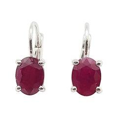 Ruby Earrings Set in 18 Karat White Gold Settings
