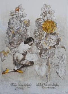 Malua Rosea Multiplex (oil painting monochrome vintage flowers figurative woman)