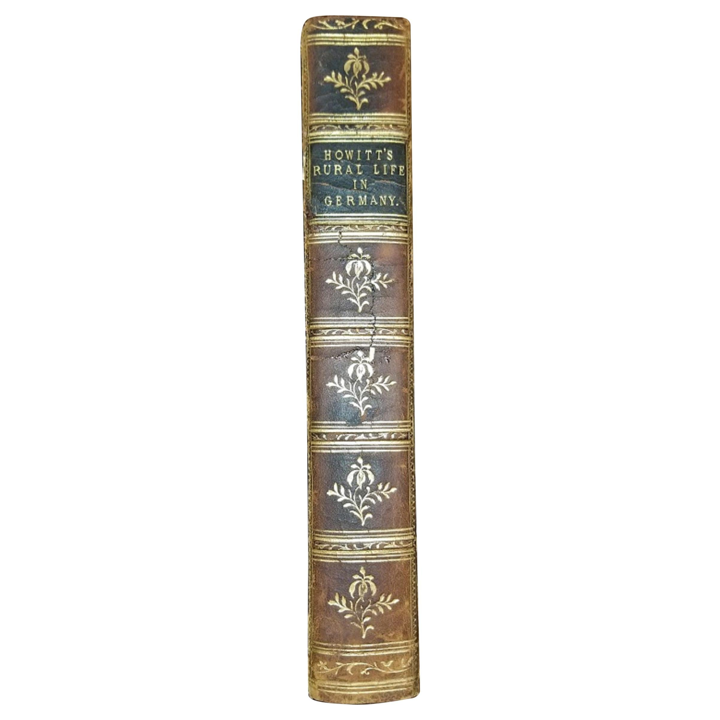 Rural and Domestic Life of Germany by Howitt, 1842