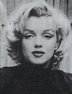 Marilyn Hollywood (Tempest Silver)