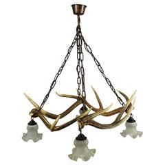 Rustic Antler Lamp with Deer Antlers