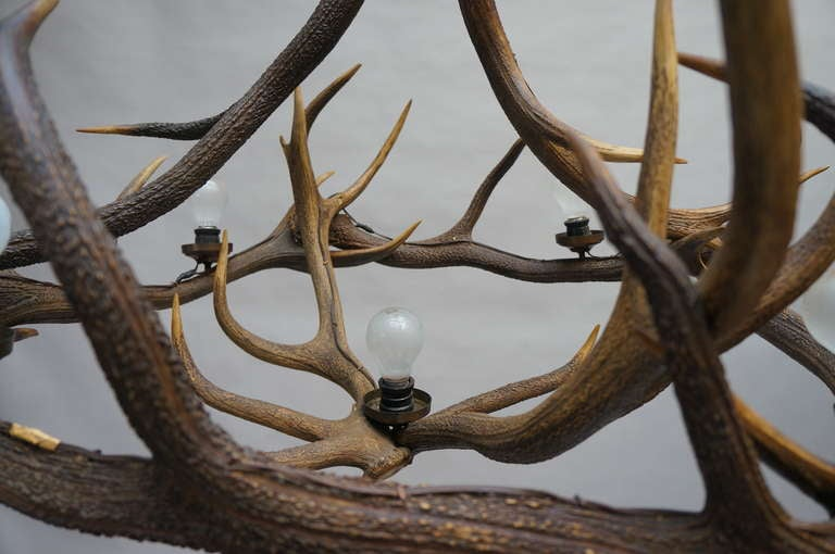 Rustic French Five-Light Antler Chandelier, circa 1950 In Good Condition For Sale In Antwerp, BE