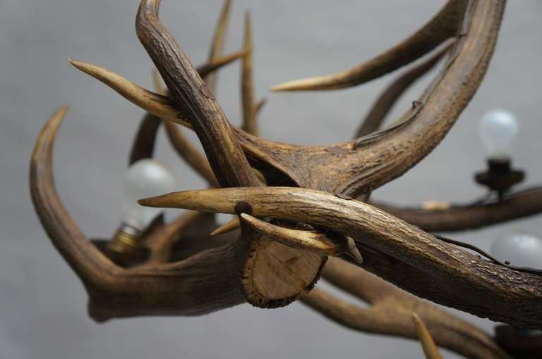 20th Century Rustic French Five-Light Antler Chandelier, circa 1950 For Sale