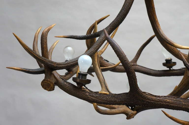 Rustic French Five-Light Antler Chandelier, circa 1950 For Sale 1