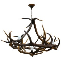 Rustic French Five-Light Antler Chandelier, circa 1950