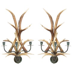 Rustic Horn and Brass Wall Sconces