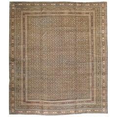 Rustic Mid-20th Century Handmade Persian Khorassan Large Square Room Size Carpet