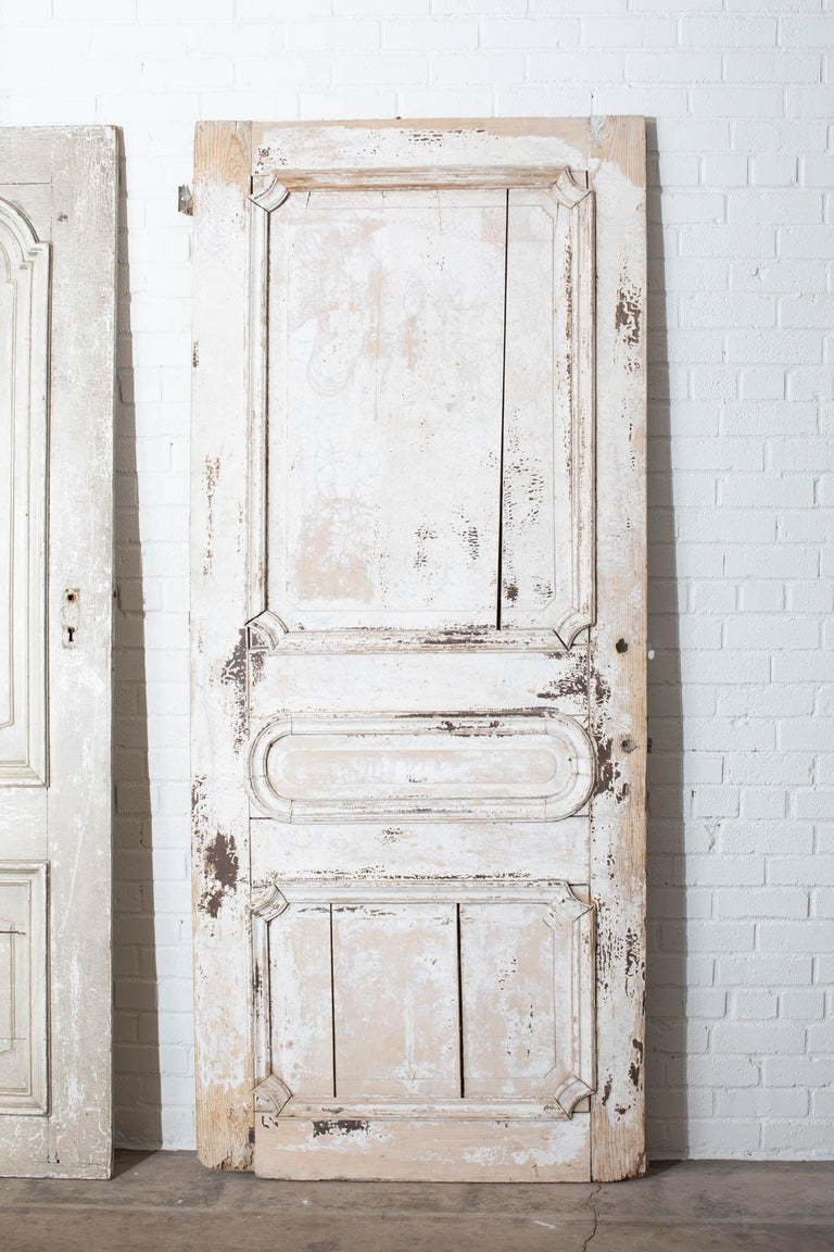 Rustic Pair of 19th Century French Painted Panel Doors For Sale 13