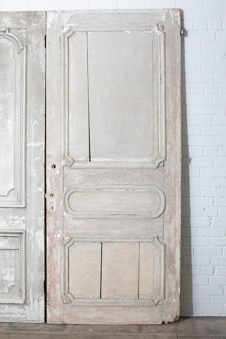Rustic Pair of 19th Century French Painted Panel Doors For Sale 1