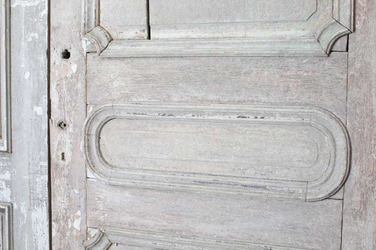 Rustic Pair of 19th Century French Painted Panel Doors For Sale 4
