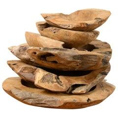 Rustic Teak Root Wooden Bowls, 20th Century
