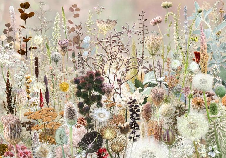 Ruud van Empel Color Photograph - Floresta #2