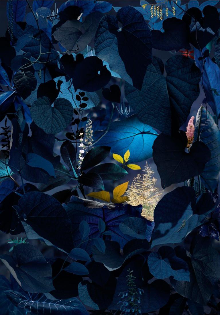 Ruud van Empel Color Photograph - Floresta Negra #5