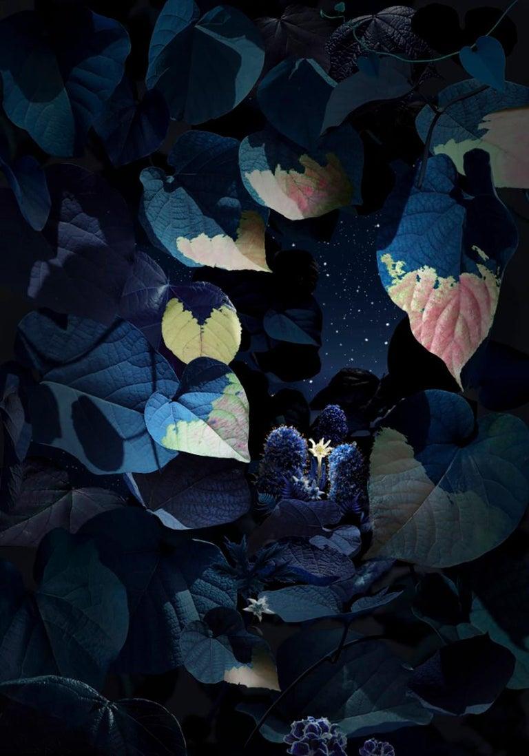 Ruud van Empel Color Photograph - Floresta Negra #6