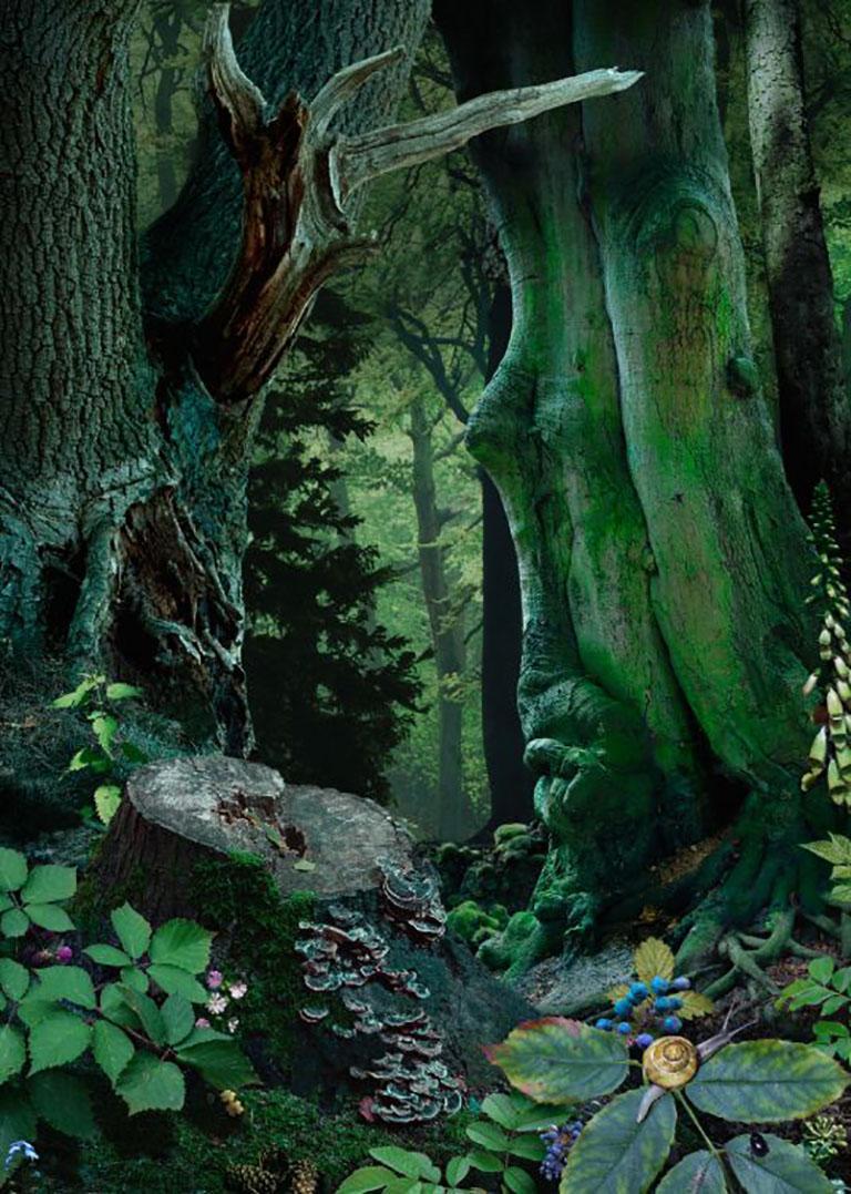Ruud van Empel Color Photograph - Study in Green #18