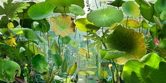 Voyage Pittoresque #1 - Ruud van Empel (Colour Photography)