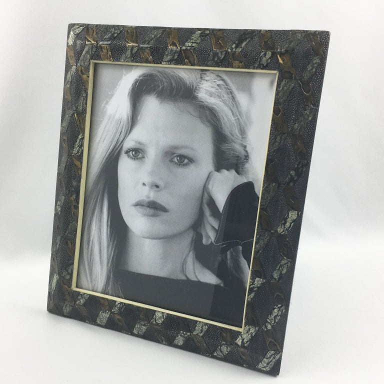 Modern R&Y Augousti Paris Shagreen Marquetry Picture Photo Frame Marble Metal Details For Sale