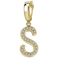 S Initial Pendant/Charm