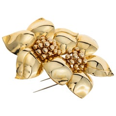 Sabbadini Flower Yellow Gold Brooch